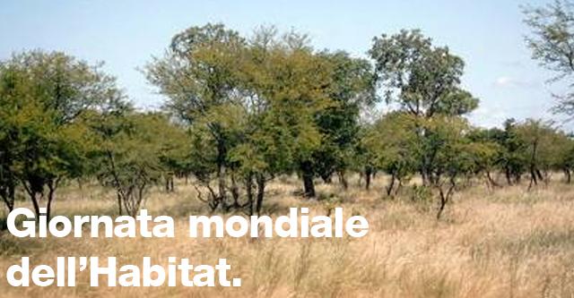 Habitat; Ambiente; club UNESCO Udine; UNESCO Udine; UNESCO